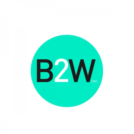 e-commerce B2W Digital
